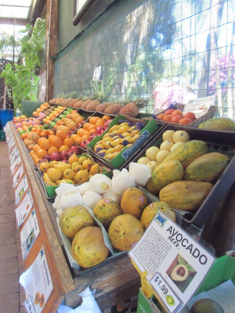 Tropisch Fruit markt Australie