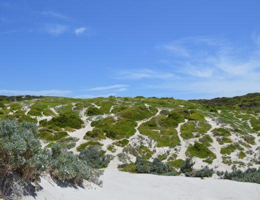 Kangaroo Island Zuid Australië vanuit Adelaide